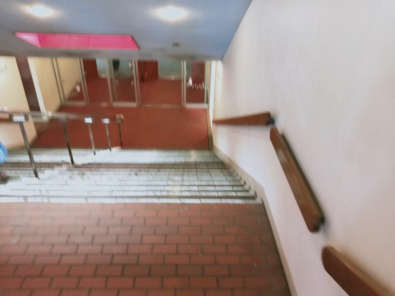 京急油壺マリンパーク イルカのショーの建物(階段)